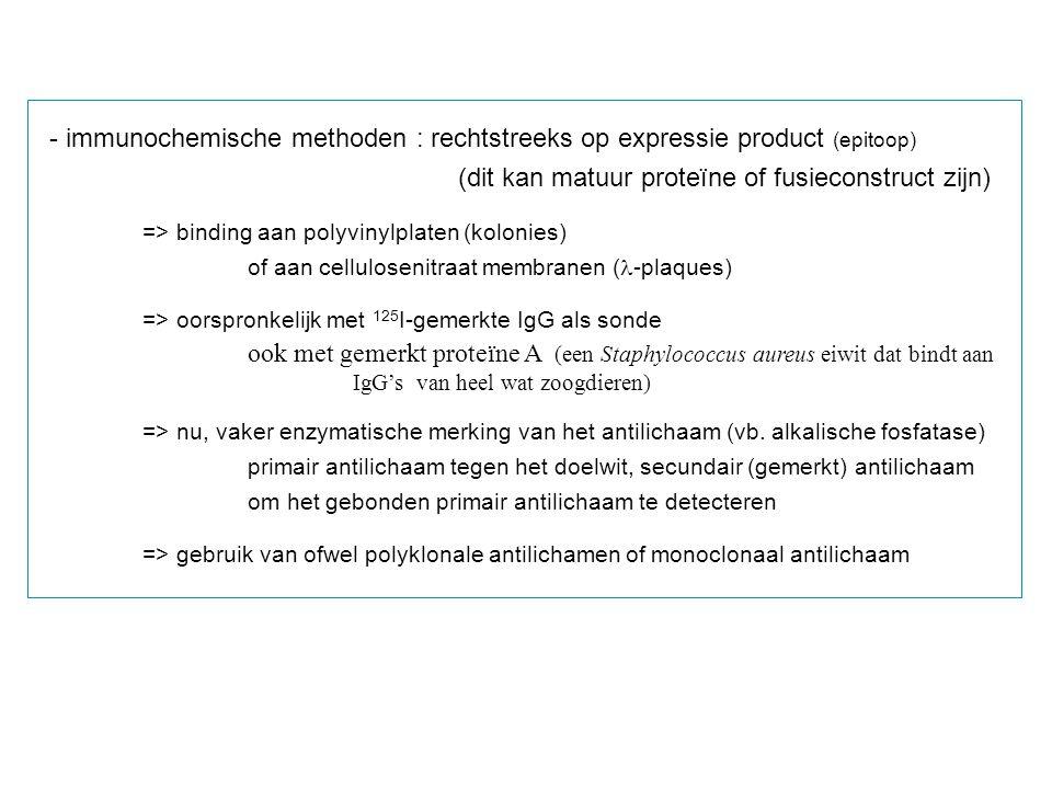 - immunochemische methoden : rechtstreeks op expressie product (epitoop) (dit kan matuur proteïne of fusieconstruct zijn) => binding aan polyvinylplat