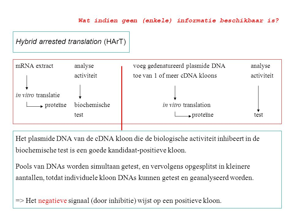 Hybrid arrested translation (HArT) mRNA extractanalyse voeg gedenatureerd plasmide DNA analyse activiteit toe van 1 of meer cDNA kloonsactiviteit in v