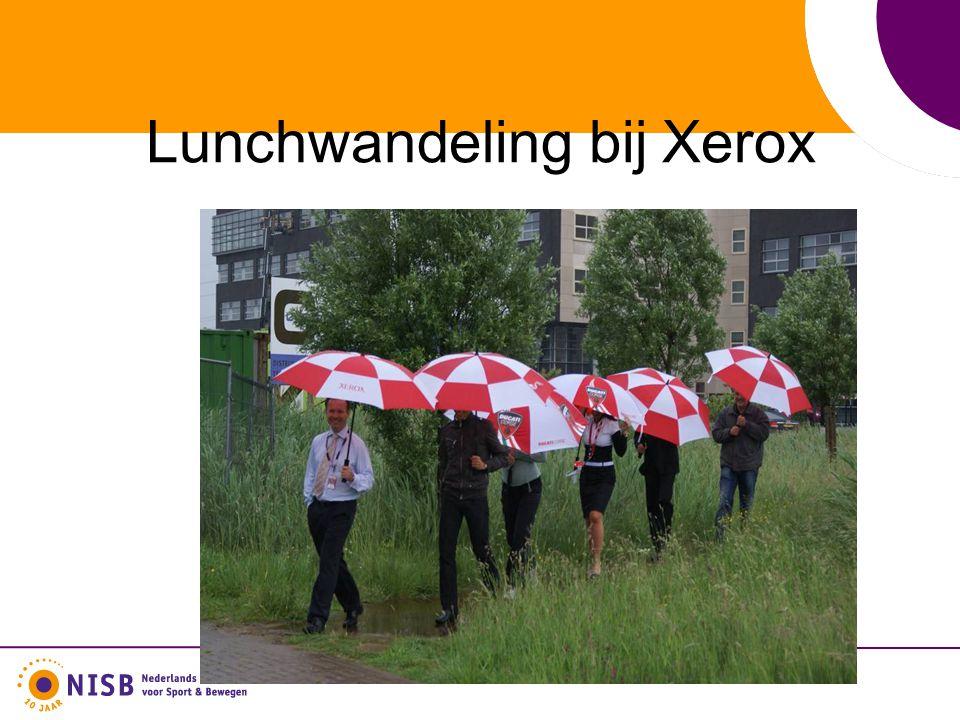 Lunchwandeling bij Xerox