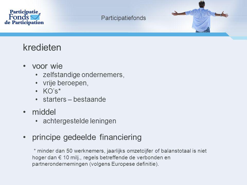 voor wie zelfstandige ondernemers, vrije beroepen, KO's* starters – bestaande middel achtergestelde leningen principe gedeelde financiering * minder dan 50 werknemers, jaarlijks omzetcijfer of balanstotaal is niet hoger dan € 10 milj., regels betreffende de verbonden en partnerondernemingen (volgens Europese definitie).