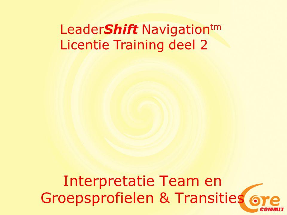 Interpretatie Team en Organisatie Waardenprofiel