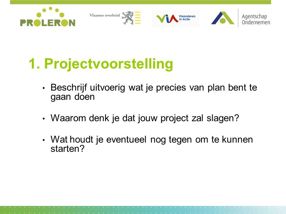 1. Projectvoorstelling Beschrijf uitvoerig wat je precies van plan bent te gaan doen Waarom denk je dat jouw project zal slagen? Wat houdt je eventuee