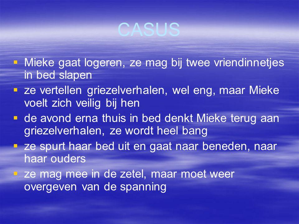 CASUS   Mieke gaat logeren, ze mag bij twee vriendinnetjes in bed slapen   ze vertellen griezelverhalen, wel eng, maar Mieke voelt zich veilig bij