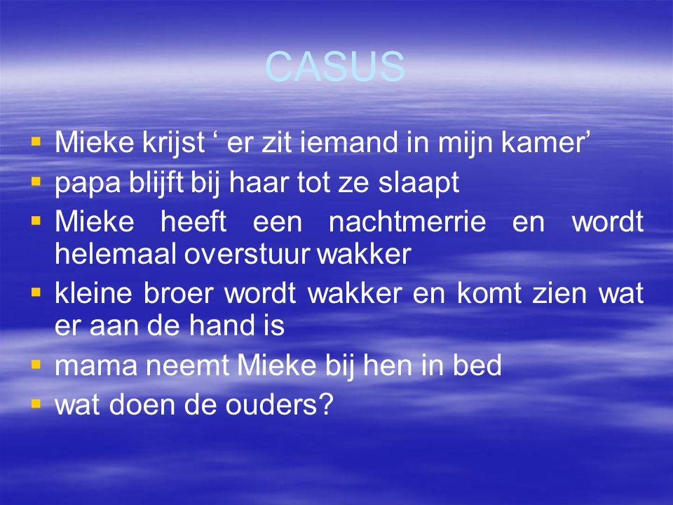 CASUS   Mieke krijst ' er zit iemand in mijn kamer'   papa blijft bij haar tot ze slaapt   Mieke heeft een nachtmerrie en wordt helemaal overstu