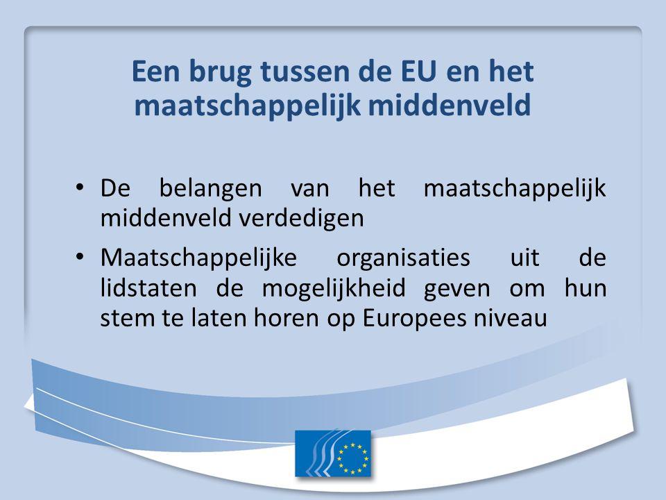 Een brug tussen de EU en het maatschappelijk middenveld De belangen van het maatschappelijk middenveld verdedigen Maatschappelijke organisaties uit de lidstaten de mogelijkheid geven om hun stem te laten horen op Europees niveau