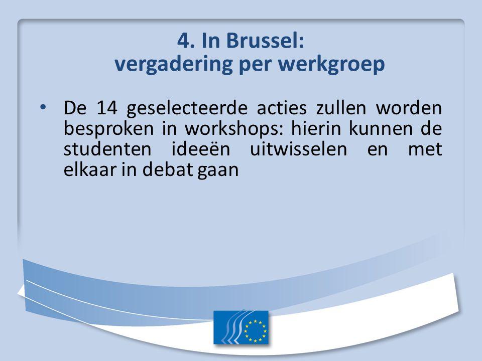 4. In Brussel: vergadering per werkgroep De 14 geselecteerde acties zullen worden besproken in workshops: hierin kunnen de studenten ideeën uitwissele