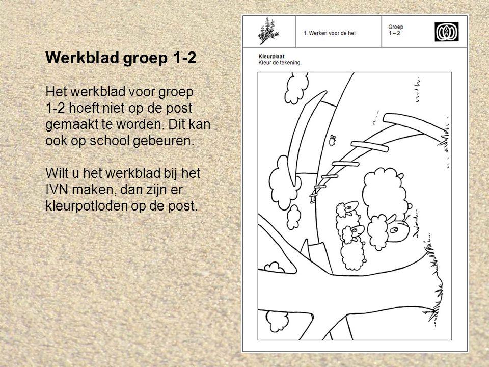 Werkblad groep 3(-4-5) Het werkblad voor groep 3(-4-5) hoeft niet op de post gemaakt te worden.