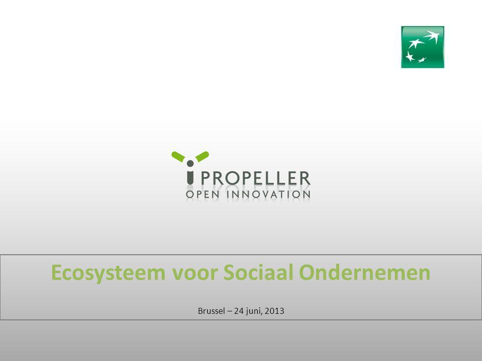 Ecosysteem voor Sociaal Ondernemen Brussel – 24 juni, 2013