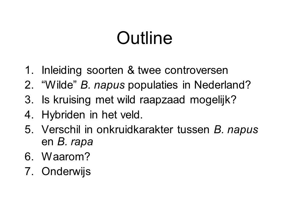 """Outline 1.Inleiding soorten & twee controversen 2.""""Wilde"""" B. napus populaties in Nederland? 3.Is kruising met wild raapzaad mogelijk? 4.Hybriden in he"""