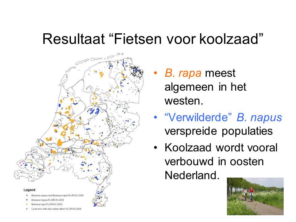 """Resultaat """"Fietsen voor koolzaad"""" B. rapa meest algemeen in het westen. """"Verwilderde"""" B. napus verspreide populaties Koolzaad wordt vooral verbouwd in"""