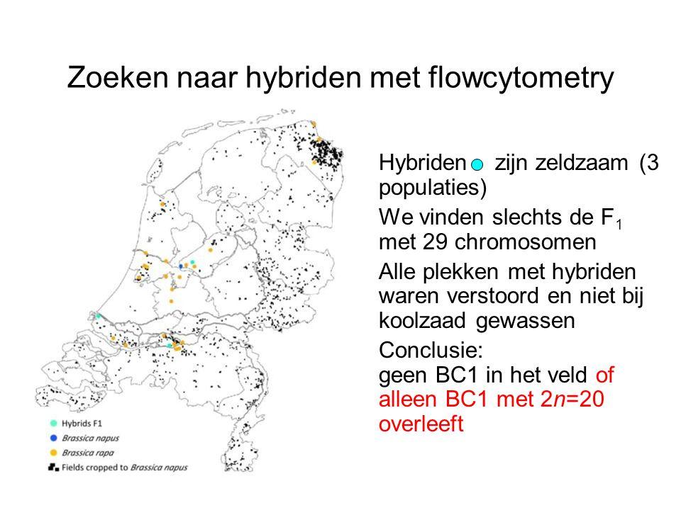 Zoeken naar hybriden met flowcytometry Hybriden zijn zeldzaam (3 populaties) We vinden slechts de F 1 met 29 chromosomen Alle plekken met hybriden war