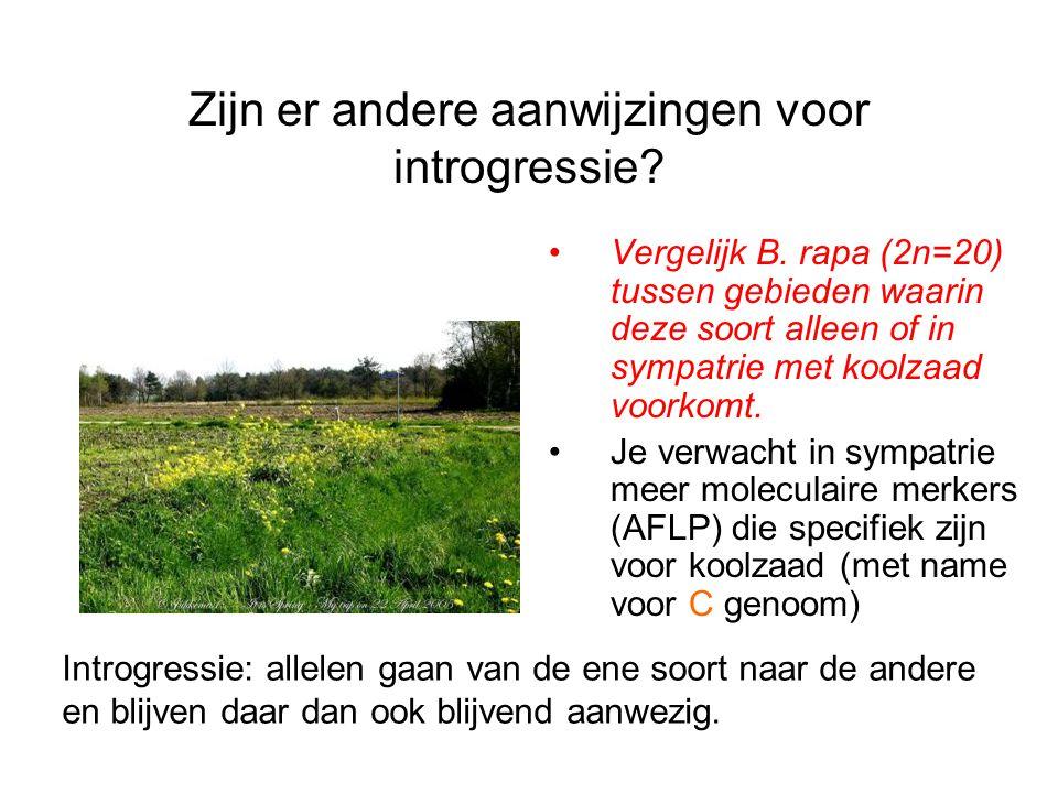 Zijn er andere aanwijzingen voor introgressie? Vergelijk B. rapa (2n=20) tussen gebieden waarin deze soort alleen of in sympatrie met koolzaad voorkom