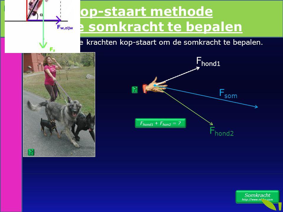 Leg meerdere krachten kop-staart om de somkracht te bepalen. Kop staart meth F hond1 + F hon2 = ? F hond1 F hond2 F som Somkracht http://www.mhhe.com
