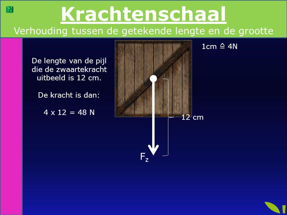 De lengte van de pijl die de zwaartekracht uitbeeld is 12 cm. De kracht is dan: 4 x 12 = 48 N 1cm ≙ 4N 12 cm Krachtenschaal FzFz Verhouding tussen de
