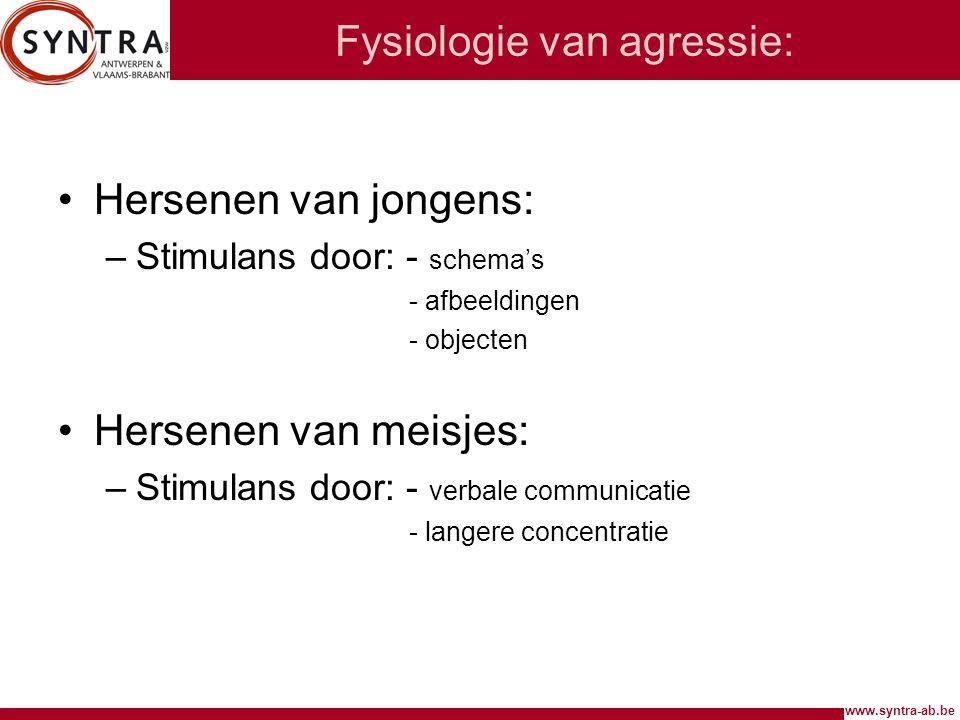www.syntra-ab.be Fysiologie van agressie: Hersenen van jongens: –Stimulans door: - schema's - afbeeldingen - objecten Hersenen van meisjes: –Stimulans