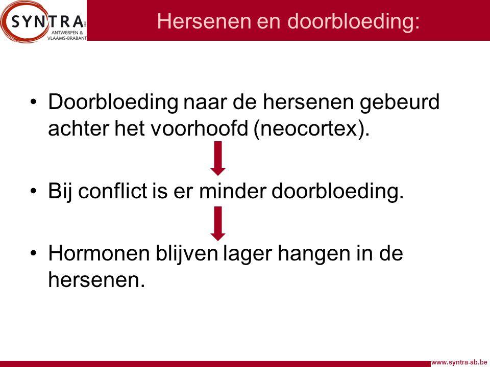 www.syntra-ab.be Hersenen en doorbloeding: Doorbloeding naar de hersenen gebeurd achter het voorhoofd (neocortex). Bij conflict is er minder doorbloed