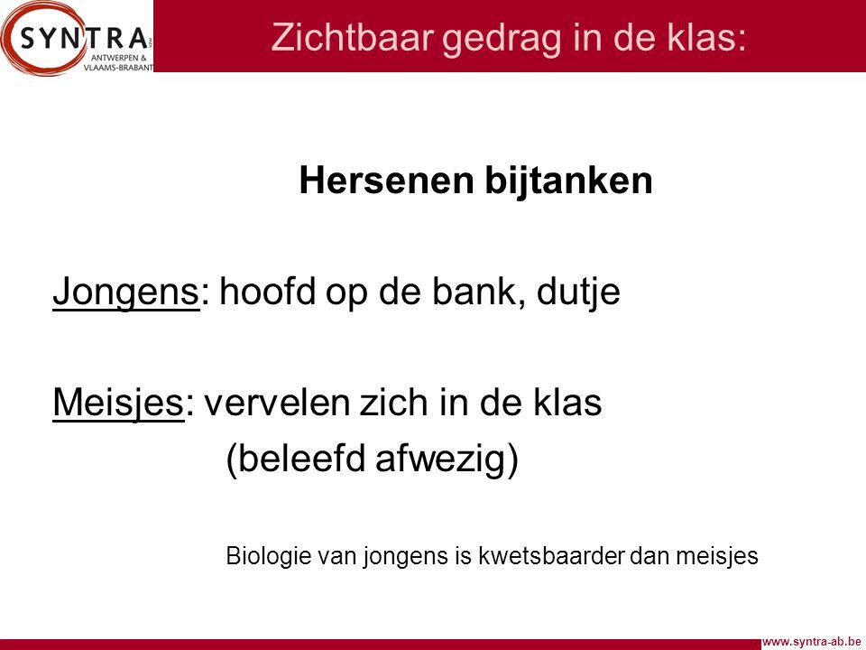 www.syntra-ab.be Zichtbaar gedrag in de klas: Hersenen bijtanken Jongens: hoofd op de bank, dutje Meisjes: vervelen zich in de klas (beleefd afwezig)