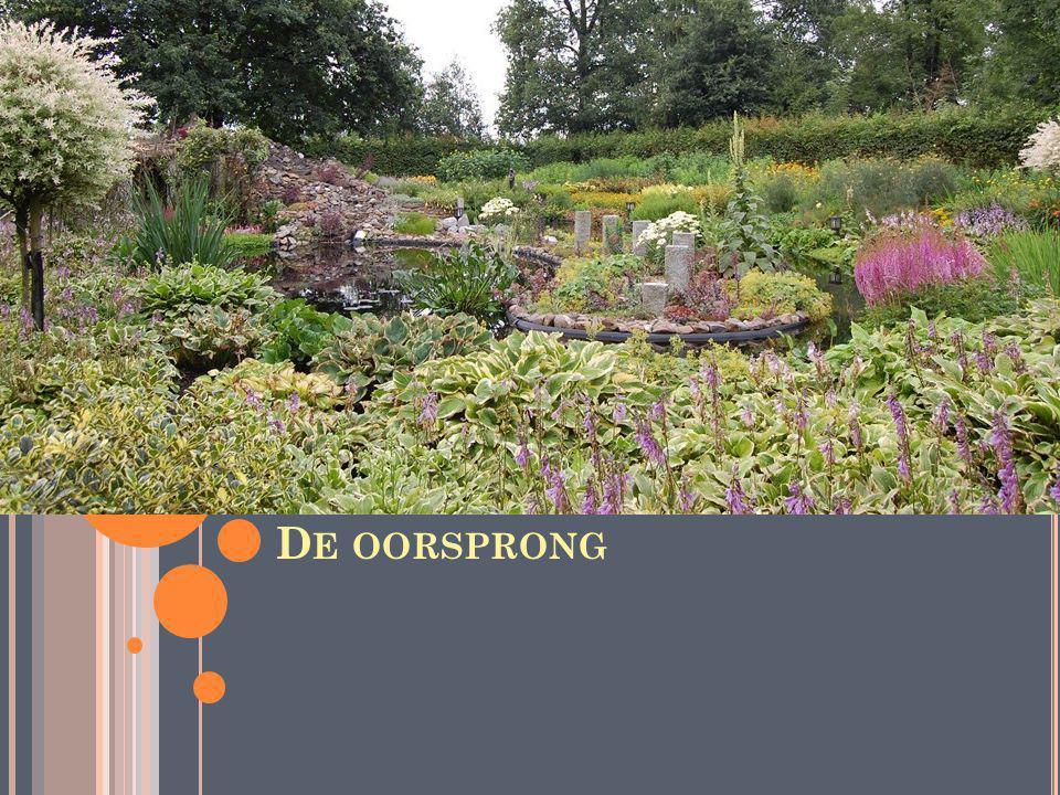 D E OORSPRONG