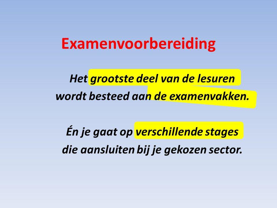 Handel & Administratie Zorg & Welzijn In welke vakken je examen doet hangt natuurlijk af van de gekozen sector.
