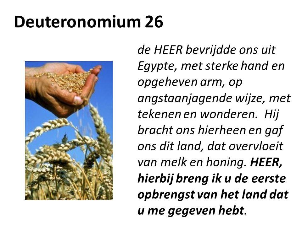 Deuteronomium 26 de HEER bevrijdde ons uit Egypte, met sterke hand en opgeheven arm, op angstaanjagende wijze, met tekenen en wonderen. Hij bracht ons