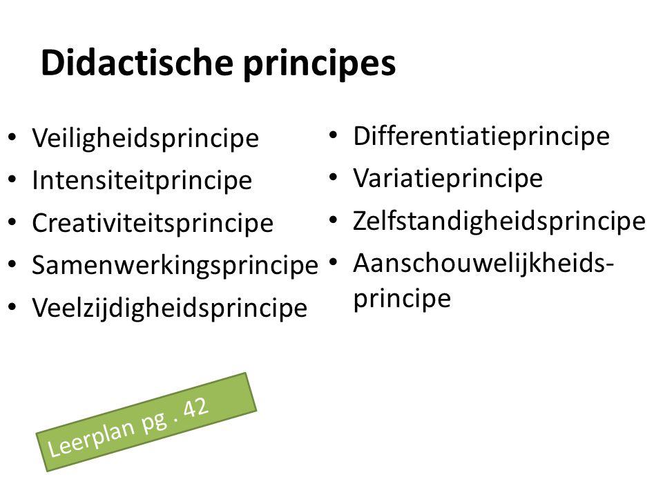 Didactische principes Veiligheidsprincipe Intensiteitprincipe Creativiteitsprincipe Samenwerkingsprincipe Veelzijdigheidsprincipe Differentiatieprinci