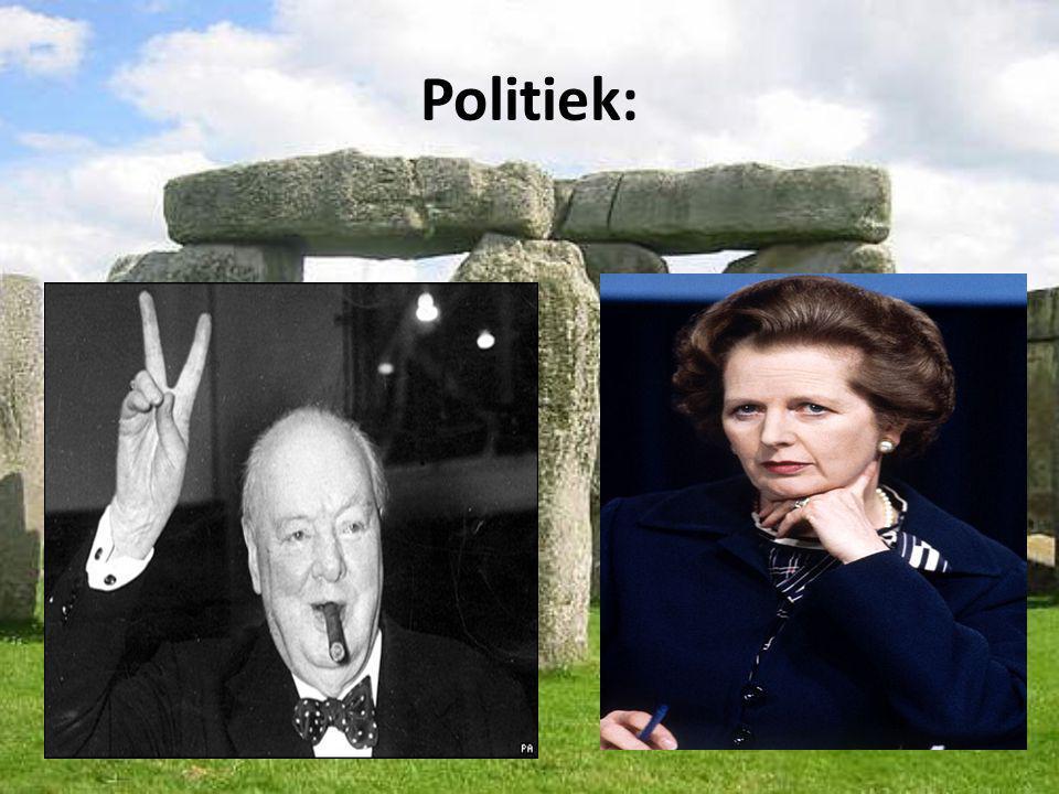 Politiek: