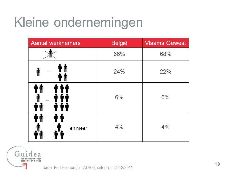 19 Kleine ondernemingen Aantal werknemersBelgiëVlaams Gewest 66%68% _ 24%22% _6% en meer 4% bron: Fod Economie – ADSEI, cijfers op 31/12/2011