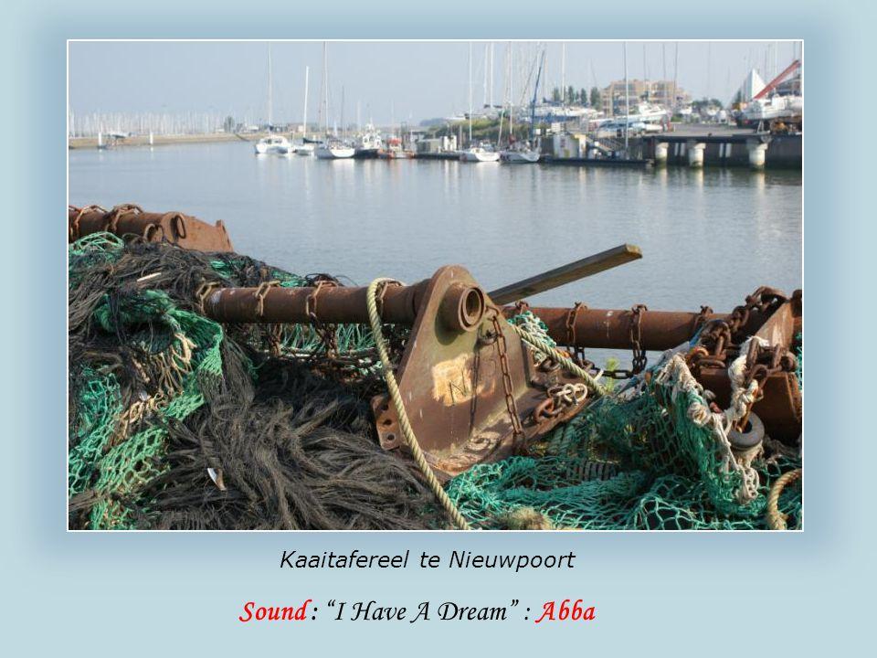 Een vertrouwd beeld zijn de vishandels over de vismijn