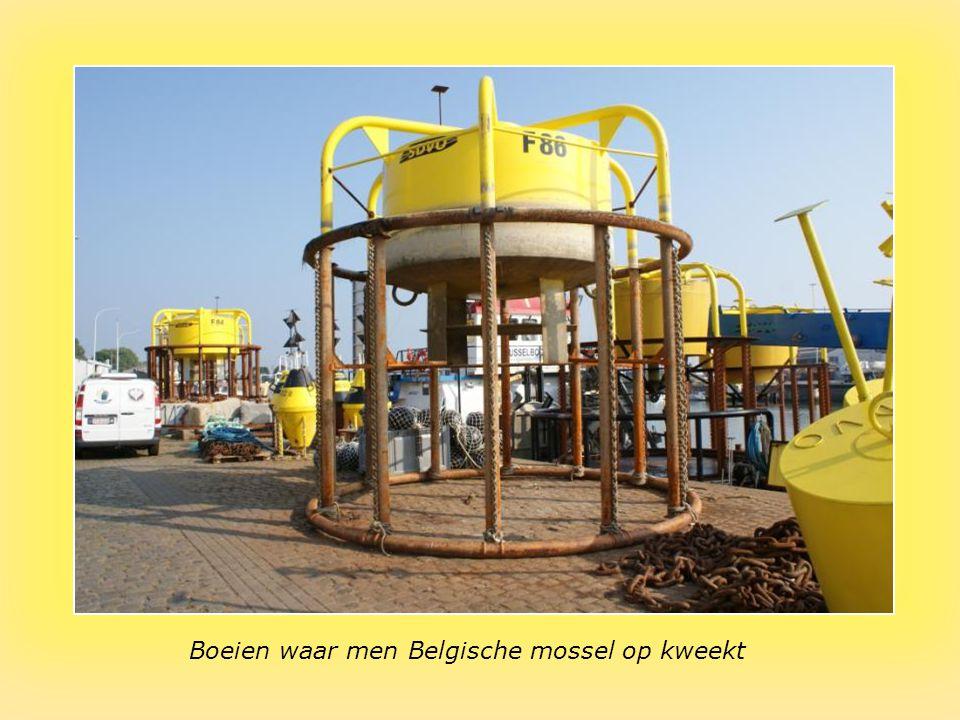 "Kaaitafereel te Nieuwpoort Sound : ""I Have A Dream"" : Abba"
