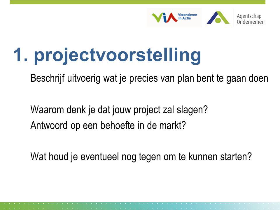 1. projectvoorstelling Beschrijf uitvoerig wat je precies van plan bent te gaan doen Waarom denk je dat jouw project zal slagen? Antwoord op een behoe