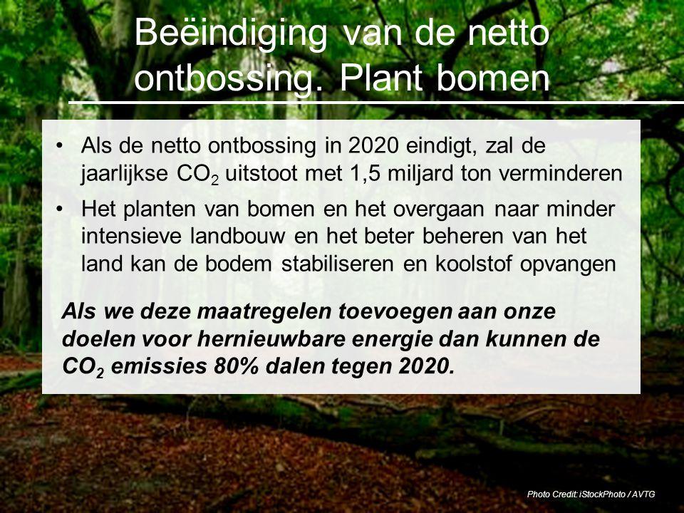 Beëindiging van de netto ontbossing. Plant bomen Als de netto ontbossing in 2020 eindigt, zal de jaarlijkse CO 2 uitstoot met 1,5 miljard ton verminde