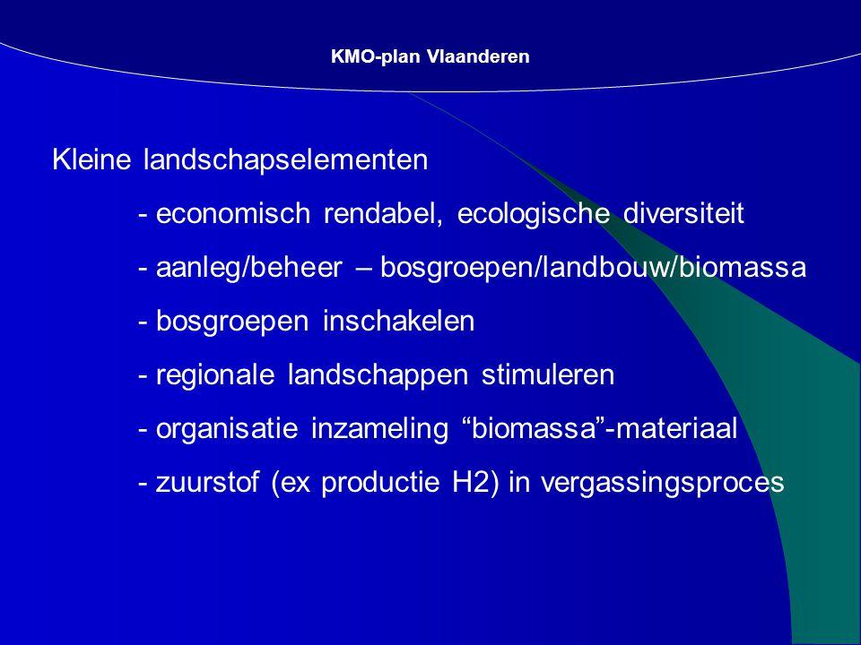 Kleine landschapselementen - economisch rendabel, ecologische diversiteit - aanleg/beheer – bosgroepen/landbouw/biomassa - bosgroepen inschakelen - regionale landschappen stimuleren - organisatie inzameling biomassa -materiaal - zuurstof (ex productie H2) in vergassingsproces KMO-plan Vlaanderen
