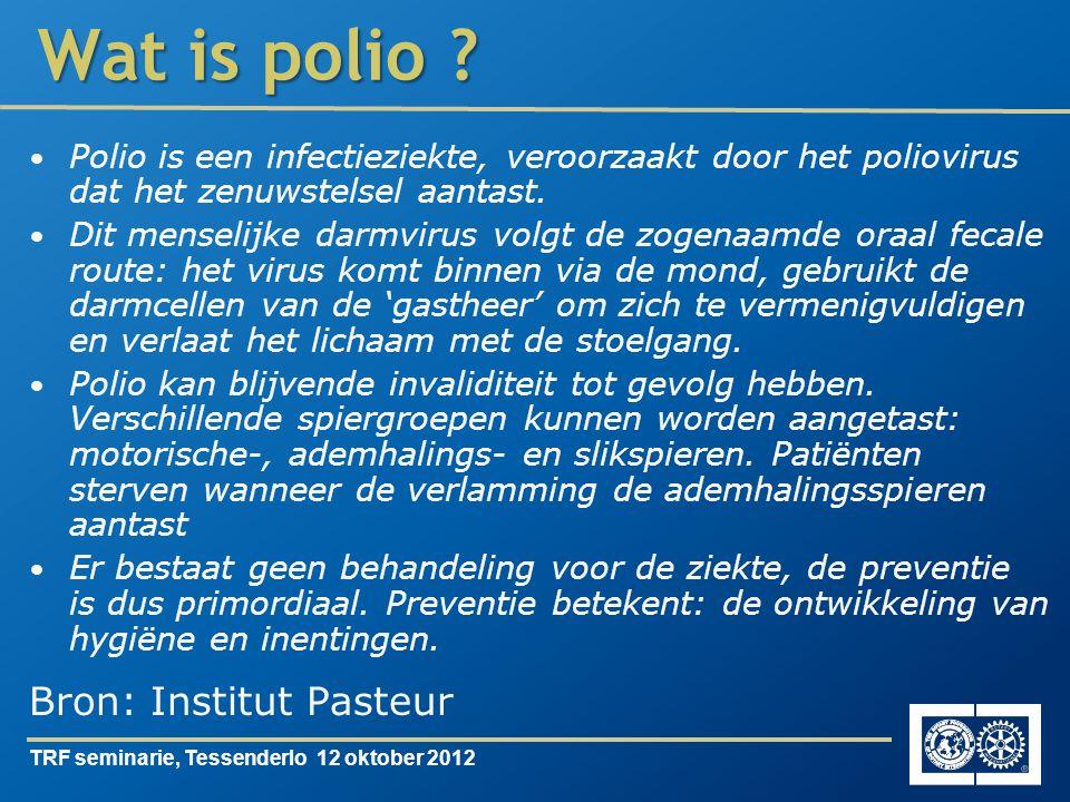 TRF seminarie, Tessenderlo 12 oktober 2012 Polio is een infectieziekte, veroorzaakt door het poliovirus dat het zenuwstelsel aantast.