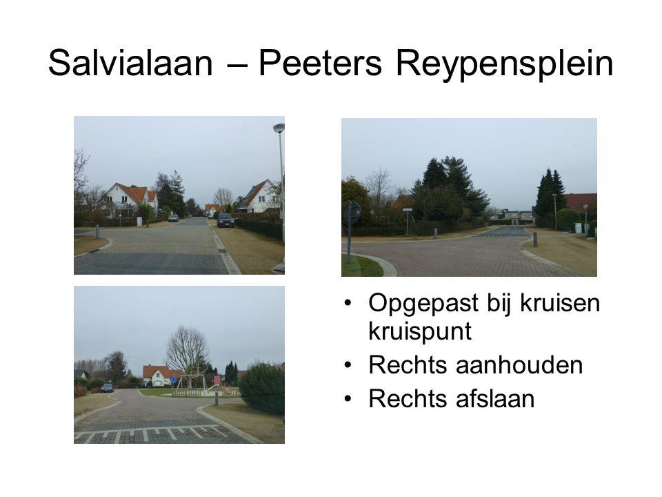 Salvialaan – Peeters Reypensplein Opgepast bij kruisen kruispunt Rechts aanhouden Rechts afslaan
