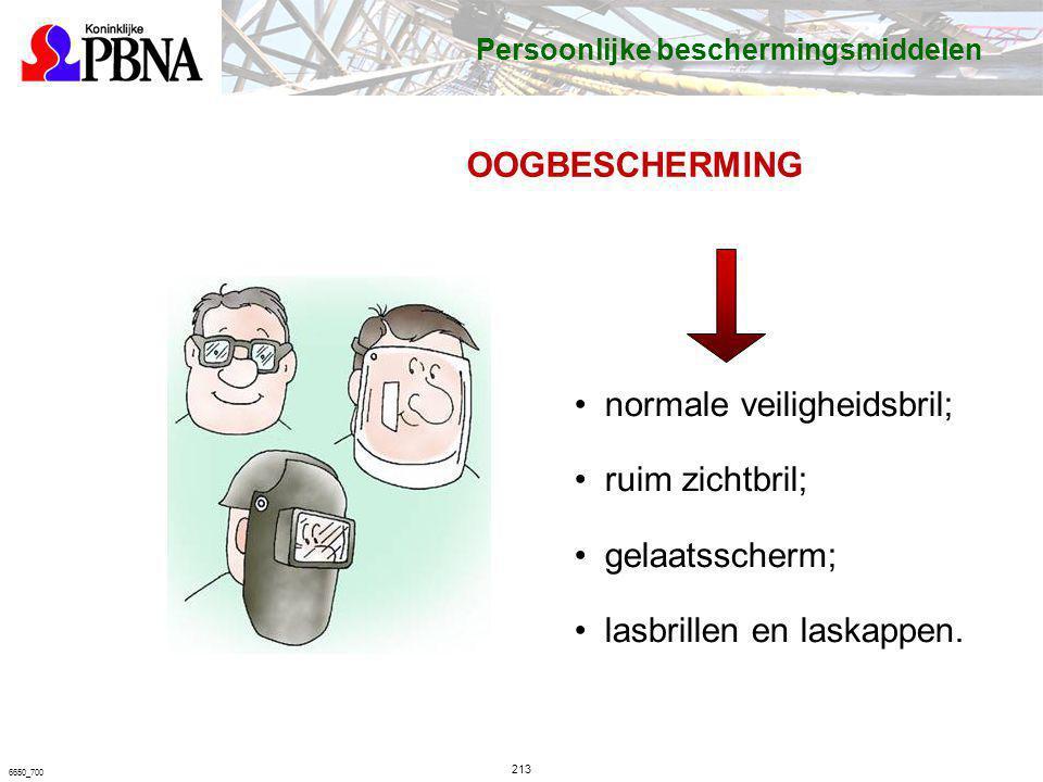 213 6650_700 OOGBESCHERMING normale veiligheidsbril; ruim zichtbril; gelaatsscherm; lasbrillen en laskappen. Persoonlijke beschermingsmiddelen