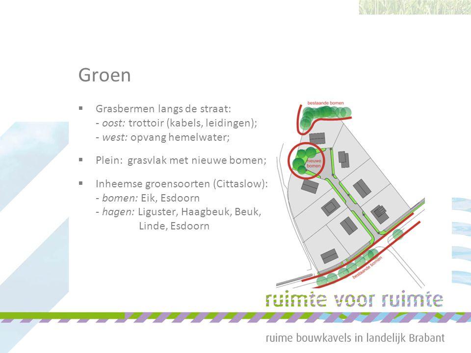 Groen  Grasbermen langs de straat: - oost: trottoir (kabels, leidingen); - west: opvang hemelwater;  Plein: grasvlak met nieuwe bomen;  Inheemse gr