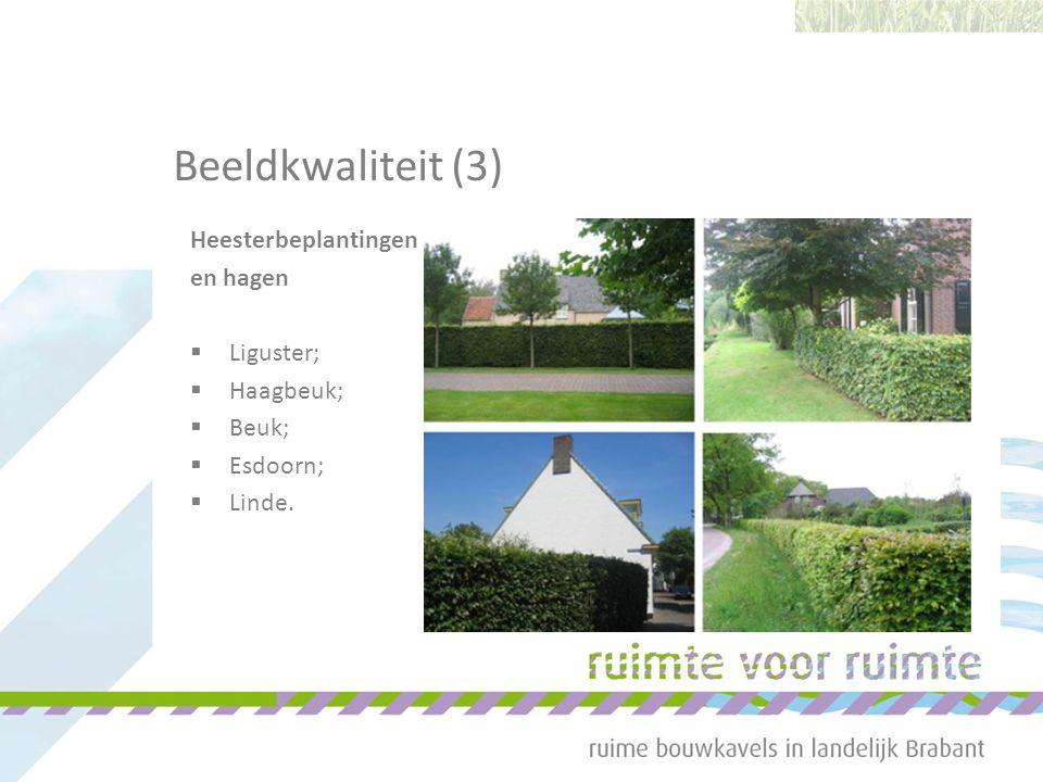 Heesterbeplantingen en hagen  Liguster;  Haagbeuk;  Beuk;  Esdoorn;  Linde. Beeldkwaliteit (3)