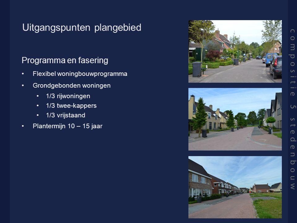 Uitgangspunten plangebied Programma en fasering Flexibel woningbouwprogramma Grondgebonden woningen 1/3 rijwoningen 1/3 twee-kappers 1/3 vrijstaand Plantermijn 10 – 15 jaar