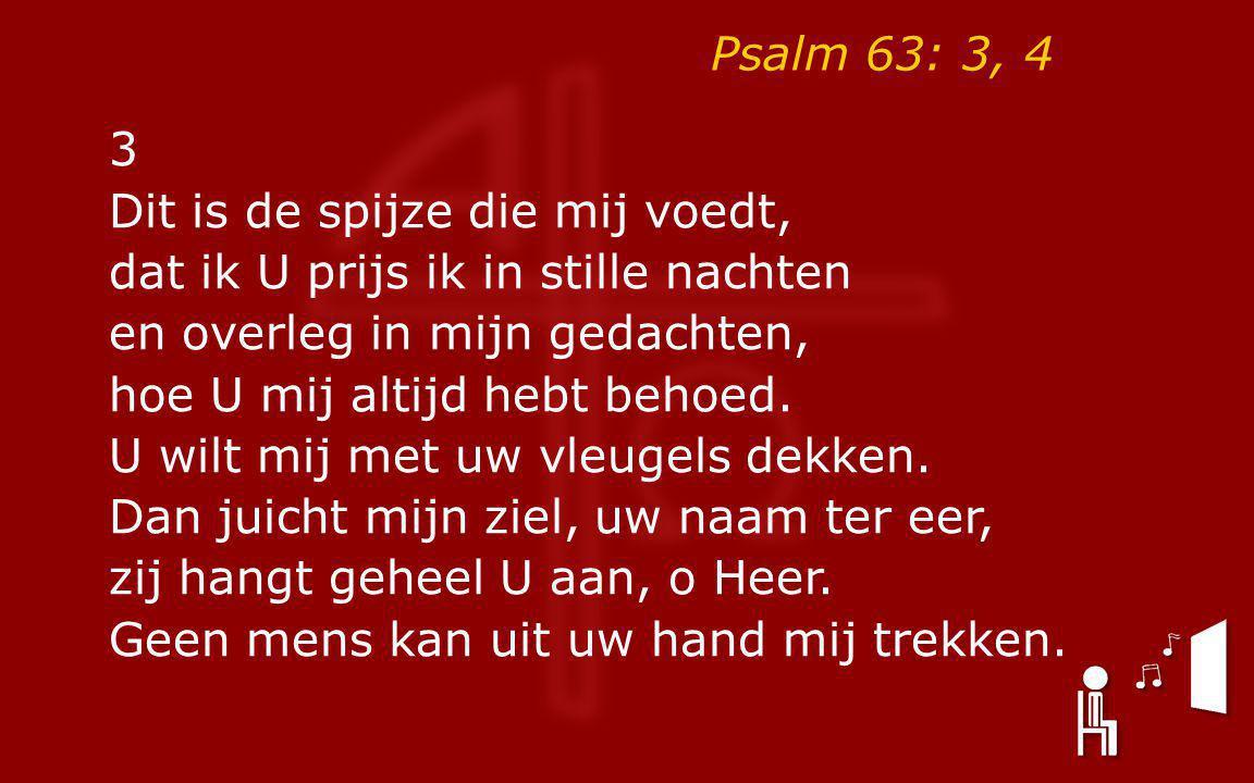 Psalm 63: 3, 4 3 Dit is de spijze die mij voedt, dat ik U prijs ik in stille nachten en overleg in mijn gedachten, hoe U mij altijd hebt behoed.