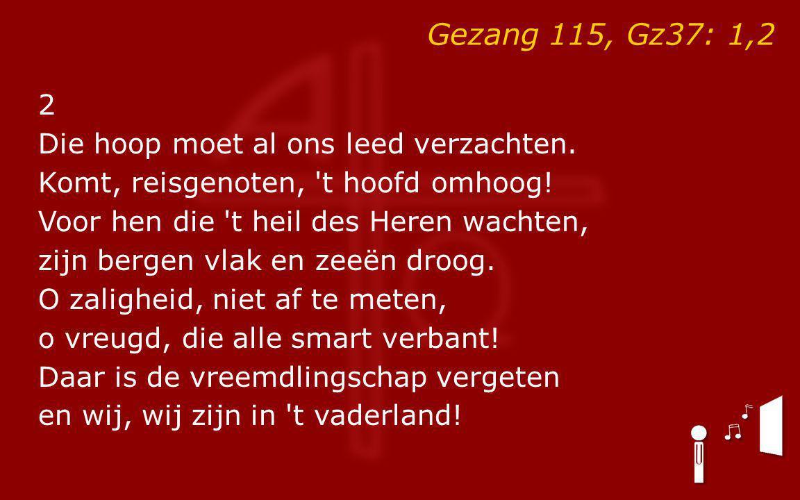 Gezang 115, Gz37: 1,2 2 Die hoop moet al ons leed verzachten.