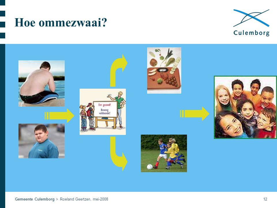 Gemeente Culemborg > Roeland Geertzen, mei-200812 Hoe ommezwaai?