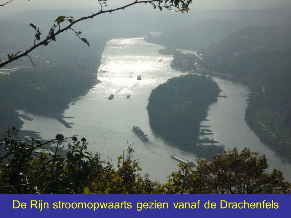 De Rijn stroomopwaarts gezien vanaf de Drachenfels
