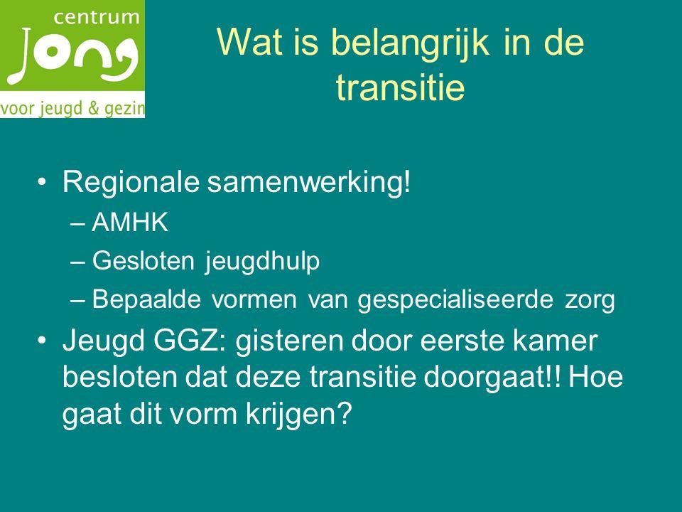 Wat is belangrijk in de transitie Regionale samenwerking.