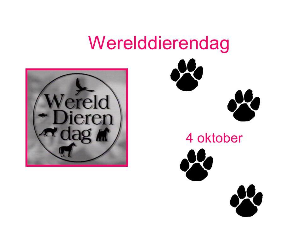 Werelddierendag Doe eens iets goeds op werelddierendag.