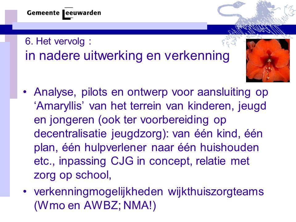 6. Het vervolg : in nadere uitwerking en verkenning Analyse, pilots en ontwerp voor aansluiting op 'Amaryllis' van het terrein van kinderen, jeugd en