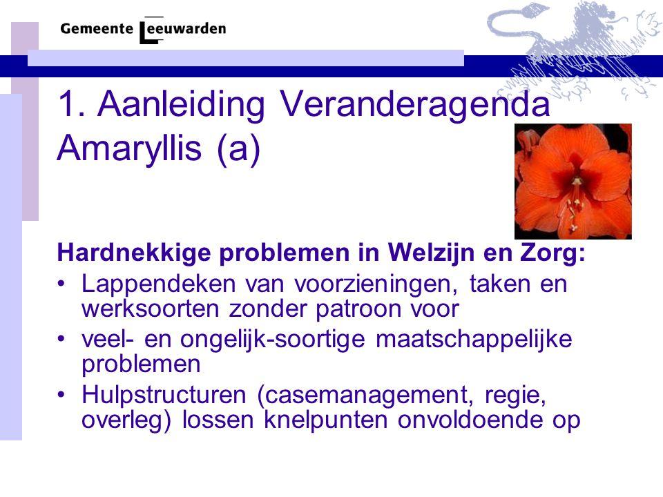 1. Aanleiding Veranderagenda Amaryllis (a) Hardnekkige problemen in Welzijn en Zorg: Lappendeken van voorzieningen, taken en werksoorten zonder patroo