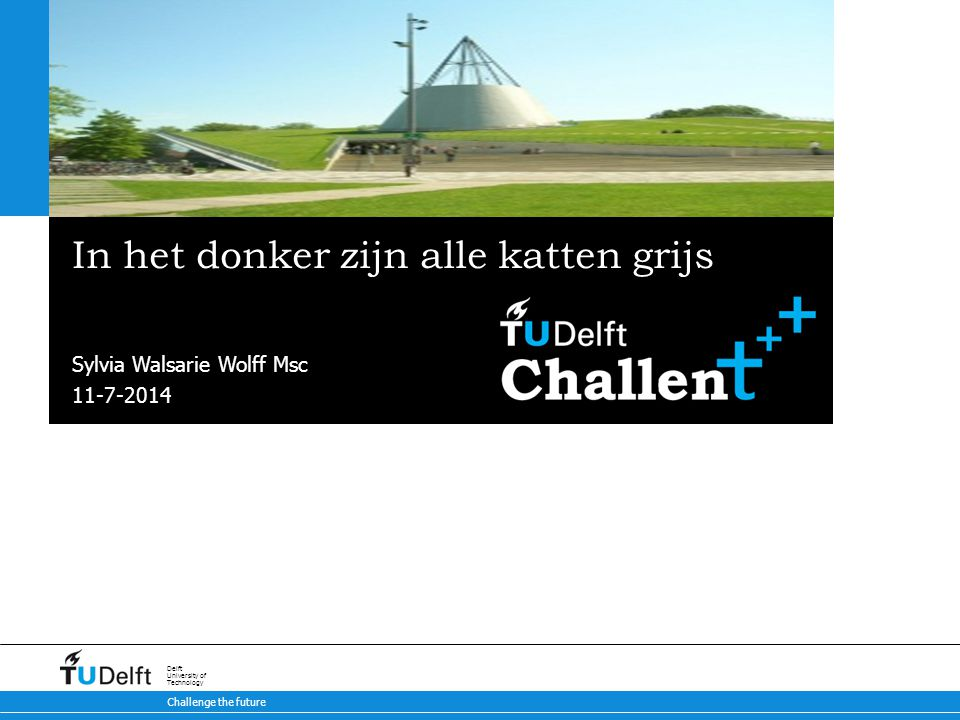Challenge the future Delft University of Technology In het donker zijn alle katten grijs Sylvia Walsarie Wolff Msc