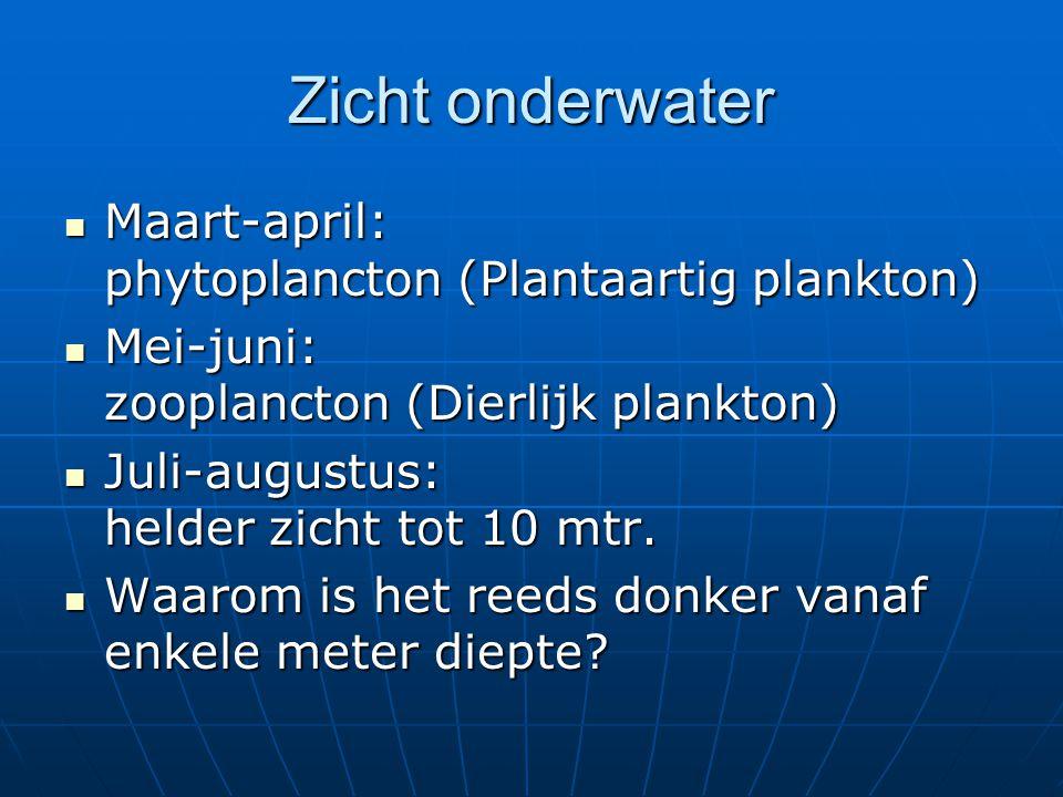 Zicht onderwater Maart-april: phytoplancton (Plantaartig plankton) Maart-april: phytoplancton (Plantaartig plankton) Mei-juni: zooplancton (Dierlijk p