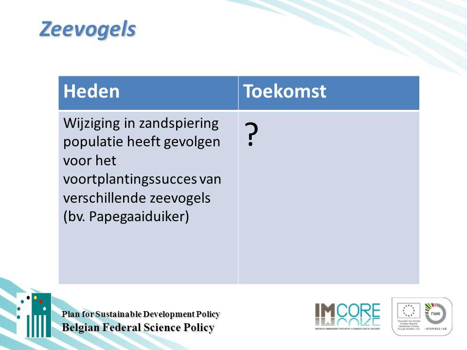 Plan for Sustainable Development Policy Belgian Federal Science Policy Zeevogels HedenToekomst Wijziging in zandspiering populatie heeft gevolgen voor het voortplantingssucces van verschillende zeevogels (bv.