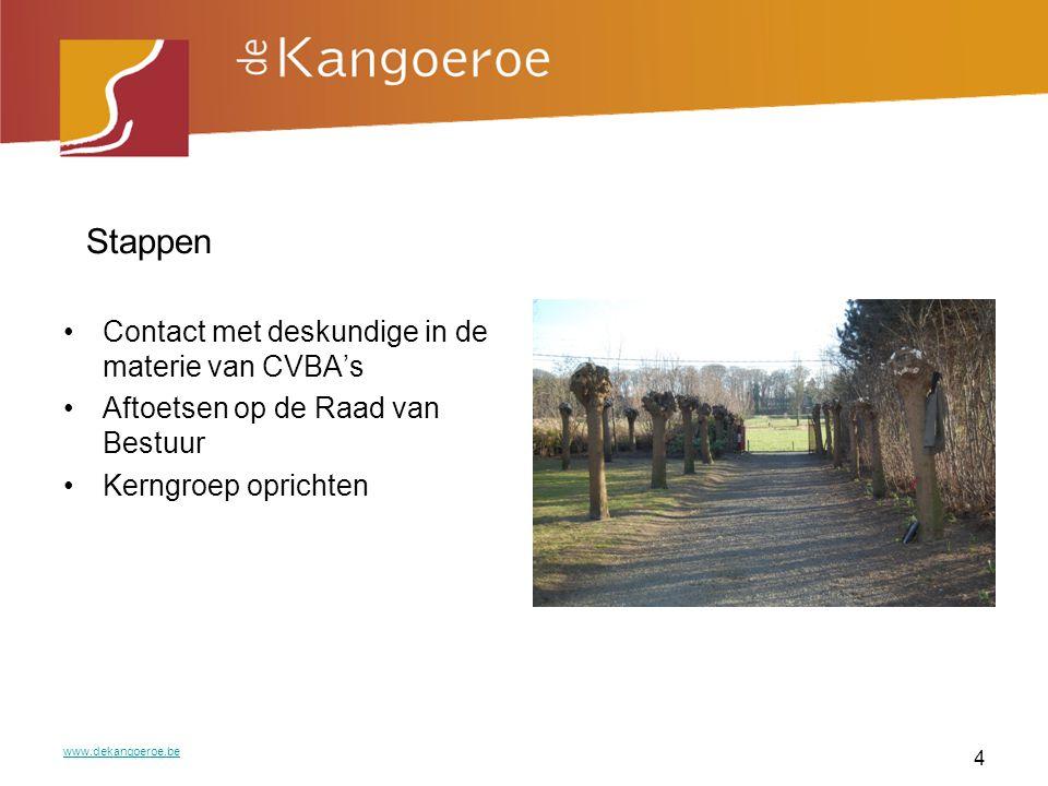 Kerngroep Zoektocht naar een concrete locatie Financieel plan Marketing plan Aftoetsen bij stakeholders www.dekangoeroe.be 5